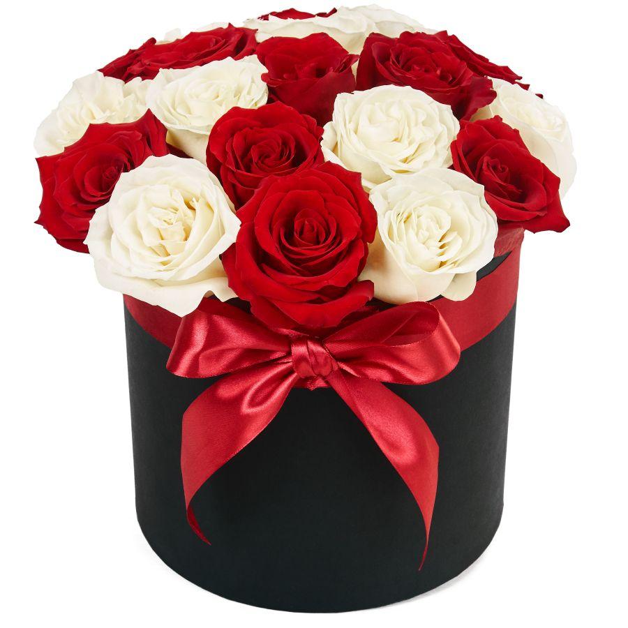 Розы красные новые